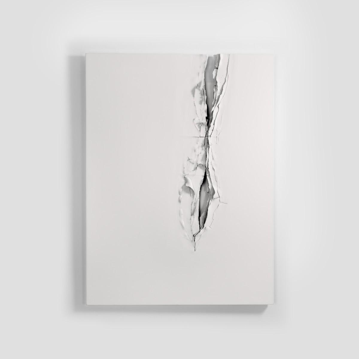 L'œuvre au blanc 2013.